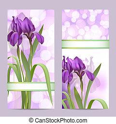 Ein paar Springbanner mit lila Irisblumen