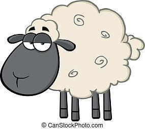 Ein süßer, schwarzer Schafstyp.