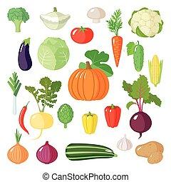 Ein Satz flaches Gemüse.