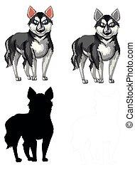 Ein Satz siberianischer Husky.