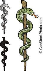 Ein Schlangenkadus