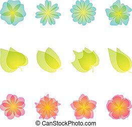 Ein Set von Blumenmustern.