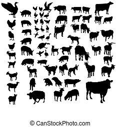 Ein Set von Haustieren