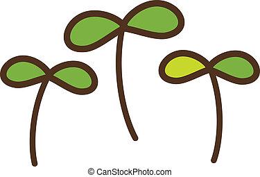 Ein Sprout