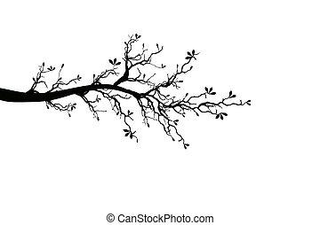 Ein Teil des Frühlingsbaums