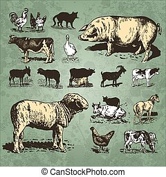 Ein traditionelles Bauerntierset (Vector)