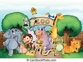 Ein Zoo und die Tiere