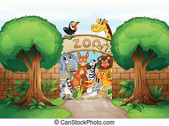 Ein Zoo und Tiere