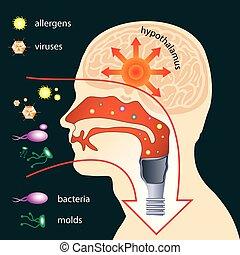 Eindringen von Parasiten in den menschlichen Körper