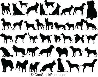 Eine große Sammlung von Hunden - Vektor