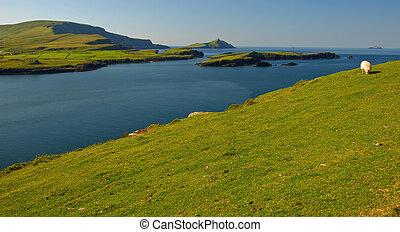 Eine Landschaft mit See und Bergen