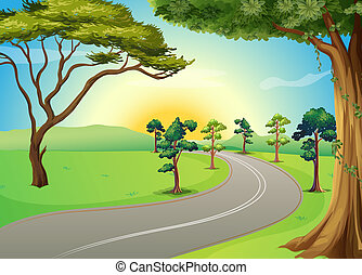 Eine lange Straße im Wald