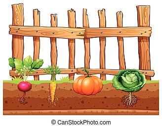 Eine Menge Gemüse.