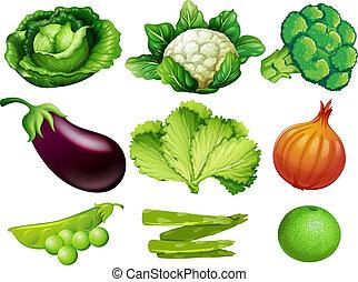 Eine Menge Gemüse weißer Hintergrund.