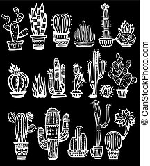 Eine Menge Kaktus.