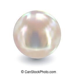 Eine Perle. Vector