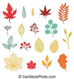 Eine Reihe stilisierter Herbstblätter und -elemente.