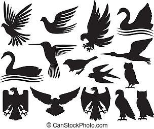 Eine Reihe von Vögeln.