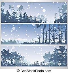 Eine Reihe von Winterwaldbannern