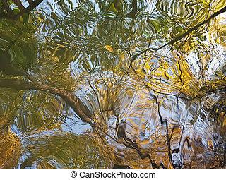 Eine riesige Pfütze: ungleiche Reflexion auf der Oberfläche des Wassers der Herbstbäume mit gelben und grünen Laub und braunen Stämmen.