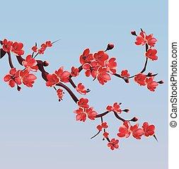 Eine rosa Blütenschneide. Japanischer Kirschbaum.