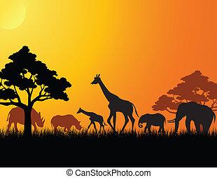 Eine Tiersilhouette aus Afrika