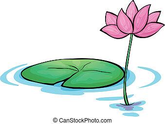 Eine Wasserblume