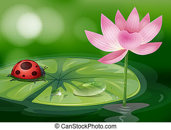 Eine Wasserrutsche mit einem roten Käfer.
