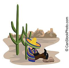 eingeschlafen, mexikanisch, wüste