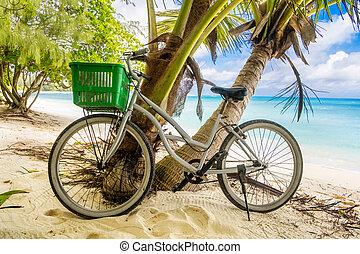 einsam, sandstrand, meer, gelassen, himmelsgewölbe, sandig, tropische , palme, fahrrad, weinlese, hintergrund.
