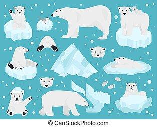 Eisbären bereit, Teddybär in der Arktis
