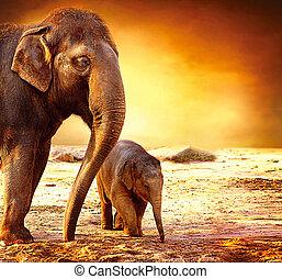 Elefantenmutter und Baby draußen.