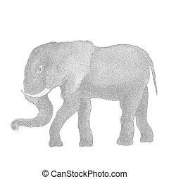 elephant., vektor, abbildung