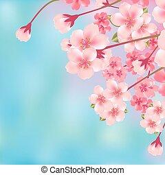 Entferne Kirschblüte