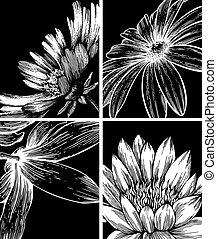 Er sammelt Hintergrundinformationen mit Blumen, Handabschneidung. Vektor Illustration.