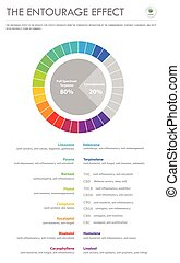 er, senkrecht, geschaeftswelt, infographic, verhältnis, begleitung, effekt