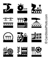 Ernte und Ernte der Landwirtschaft.