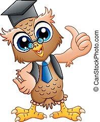 eule, professor, kappe, karikatur, studienabschluss