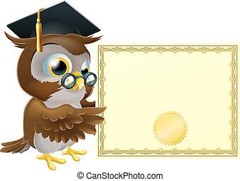 Eulen-Diplom-Hintergrund
