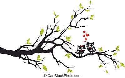 Eulen verliebt auf Baum, Vektor.