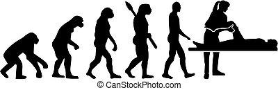 evolutionsphasen, therapeut, weibliche , physisch