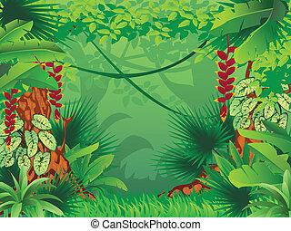 Exotischer tropischer Wald