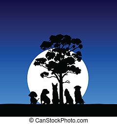 Fünf Haustiere im Moonligh
