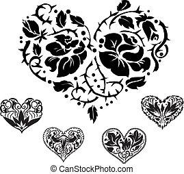Fünf Herzmuskeln