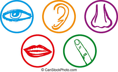 Fünf Sinne Icon Set - Vektor Illustration