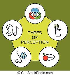 Fünf Sinneskonzept