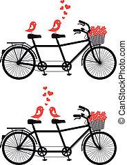 Fahrrad mit Liebesvögeln, Vektor
