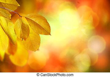 Fallen. Herbst