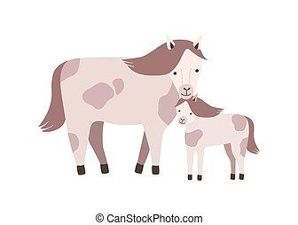 familie, fohlen, inländisch, freigestellt, offspring., pferd, bunte, pflanzenfressend, hintergrund., weißes, wohnung, elternteil, fohlen, animals., baby, youngling, karikatur, illustration., vektor, mutter, wild, oder