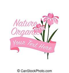 Farbige Wasserfarben Textur Vektor Natur botanischen Garten Blumen Banner rosa Iris.